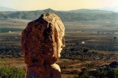 Estatua Dama Olivos